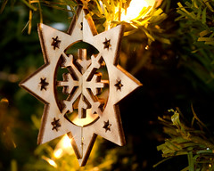 Day 301 / Snowflake (Josh Thompson) Tags: sb600 christmastree christmasornament tamronspaf90mmf28dimacro sc28 lightroom3 d7000