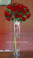 Palo Alto Wedding Flowers, Red Flower Centerpieces (Signature Bloom) Tags: pictures flowers winter wedding decorations red flower classic floral rose for design designer events traditional sanjose images reception designs florist paloalto vendor siliconvalley carnation weddings bridal decor peninsula southbay ideas weddingflowers weddingphotos freesia arrangements floraldesign sanjoseca florists specialevents centerpieces paloaltoca weddingideas bridalflowers weddingdecorations floraldesigner flowerdesign receptionflowers 95121 94304 weddingflorist redwedding weddingfloral weddingvendor redcenterpieces flowersforwedding signaturebloom redarrangements wwwsignaturebloomcom bridalflorist paloaltogolfcountryclub paloaltoflorist paloaltoweddingflorist weddingfloristpaloalto paloaltoweddingflowers
