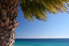 Fuerteventura 2011