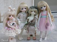All my YOSD dolls (Sozalina) Tags: world horse green face up grey md doll sweet fairy tiny bjd soom alk limited gem teenie sov dtype lelia kirara leeke aloa yosd leekeworld yrie dannyvanilla