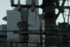 東京拘置所 画像31