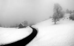 Curve_Hergiswil (Ercan Akkaya) Tags: snow schweiz switzerland olympus curve hergiswil nidwalden blackwhitephotos olympusstylus1030sw u1030sw