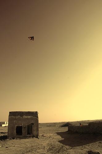 Kite runner ©  Still ePsiLoN