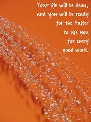2 Timothy 2:21b (@}ARosePhotos~~) Tags: orange water shower instantfave photographyrocks onephotoweeklycontest amberrosephotography