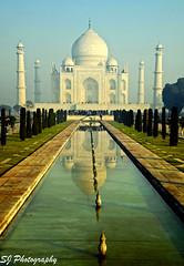 india (88)Taj Mahal