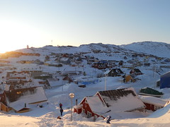DSCN6659 (k_joelsen326) Tags: flowers snow mountains ice dogs weather boats islands ships lakes sunsets rivers greenland streams oceans sunrises helicopters harbors icebergs seas sledge qaqortoq nativehabitats