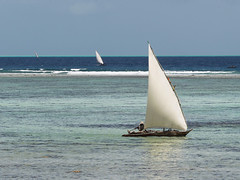traditional dhows - zanzibar (Emmanuel Catteau photography) Tags: ocean africa travel blue sea tourism water coral fishing fisherman holidays paradise photographer turquoise indian traditional reporter diving vessel national arab journey planet conde lonely zanzibar reef geo marvelous geographic nast dhow traders catteau wwwemmanuelcatteaucom