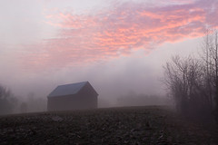 Seize the Moment (jeffsmallwood) Tags: morning fog clouds barn rural sunrise dawn maryland calvert calvertcounty