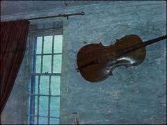 Cello, Edinburgh (douglas&helen) Tags: flowers trees sea england london graveyard sunshine america creek scotland landscapes edinburgh cornwall darkness parks oldbuildings beaches softfocus dreamy alleys lanes lostgardensofheligan pixlr