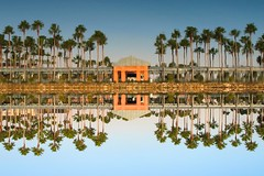 Still waters run deep (Brian Utesch (shutterBRI)) Tags: travel blue trees sky reflection water canon reflections palms hotel orlando still swan florida dolphin disney calm palmtrees walkway hotels wdw waltdisneyworld lotusphere 2012 shutterbri brianutesch