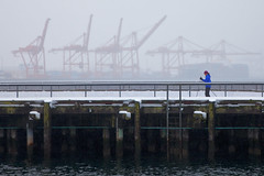 Cross-country Skier on Piers 62 and 63 in Seattle (Lee Rentz) Tags: seattle park city winter snow cold weather pier washington downtown ship northwest snowy bad cranes container pacificnorthwest northamerica chilly snowing recreation washingtonstate snowfall frigid crosscountryskiing wintery wintry pier63 nordicskiing containercranes pier62 terminal46 piers62and63