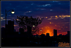 071A (Mobeen Mazhar) Tags: road city sunset sea beach night marina sunrise mall zoo al gulf centre towers 360 center crescent kuwait souq maidan salmiya avenues scientific ahmadi sharq fahaheel hawally hamra failaka safat agaila farwaniah