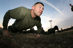 Security Cooperation Group Marines strengthen their combat fitness [Image 1 of 2] (DVIDSHUB) Tags: wisconsin training virginia us team military event va milwaukee pushups squad virginiabeach lead challenging physical fortstory camaraderie physicaltraining combatfitness circuitcourse jointexpeditionarybase mcscg teamworkmotivation