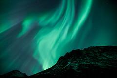 Aurora Borealis, 24.01.2012 (Tor Even Mathisen) Tags: auroraborealis grøtfjorden kvaløya nordlys aurora