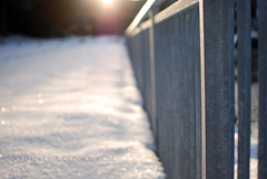 Sunny winter day fence (e.kristina) Tags: snow sunshine fence friday wonter