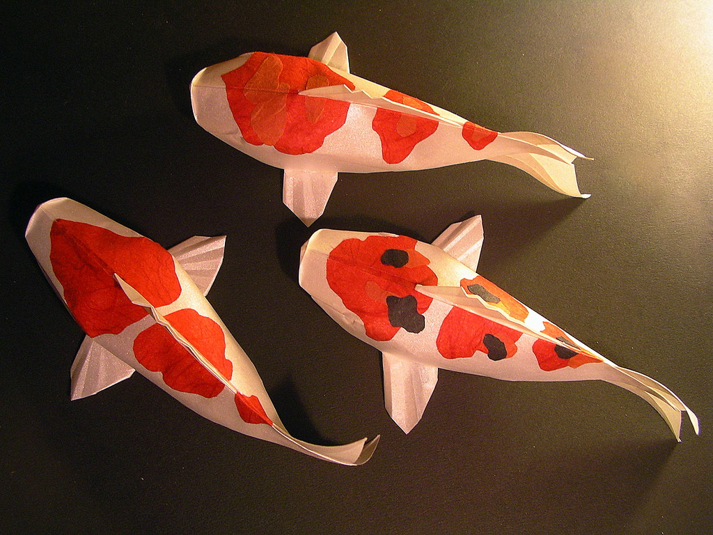 how to make an origami koi fish 28 images easy dollar