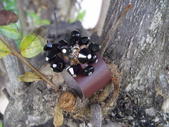 Brown Leather Ring (Piedras Handcrafted Jewelry) Tags: leather beads handmade unique jewelry ring handcrafted