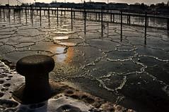 Neustadt - Schleswig-Holstein - Pancake Ice (Pana53) Tags: winter ice coast balticsea ostsee neustadt klte eingefroren erstarren pana53 schleswigholsteinice panncakeicepanncake