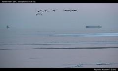 IMG_0213 (raymondklaassen) Tags: 20 ijs koud vorst markermeer zonsopkomst konvooi ijsvlakte