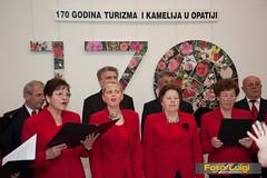 "Izložba kamelija 2014, Udruga ljubitelja kamelija Opatija • <a style=""font-size:0.8em;"" href=""http://www.flickr.com/photos/101598051@N08/13631425373/"" target=""_blank"">View on Flickr</a>"