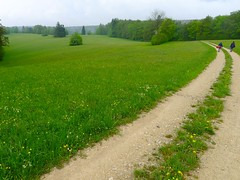 P1600955 (Wanderfotos) Tags: randen msli