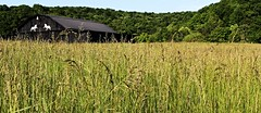 IMG_6728 (Laurence's Pictures) Tags: rural america landscape kentucky barns farms scenes berea appalacia