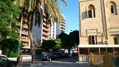 Latakia (nesreensahi) Tags: street city trees sky cars nature landscape corniche syria siria  syrie latakia
