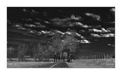 Direction Pontarlier (Ylliab Photo) Tags: road france canon french landscape blackwhite nb jura paysage eos5d ylliab ylliabphoto lepaysagesimplement