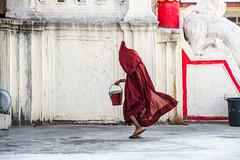 Red on White-DSC_0095-2 (thomschphotography3) Tags: boy red children colours child burma streetphotography myanmar birma monastry novice