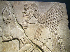 Brooklyn Museum - Winged genie - detail (bronxbob) Tags: nyc newyorkcity art brooklyn museums brooklynmuseum reliefs assyrian assyrians ashurnasirpalii