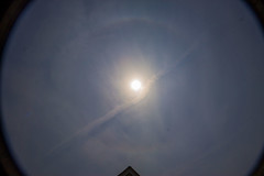 22 Degree Halo & Contrail Shadow 11:25am BST 06/07/16 (Mary McIntyre nee Spicer) Tags: atmosphericoptics opticaleffects solarhalo 22degreehalo