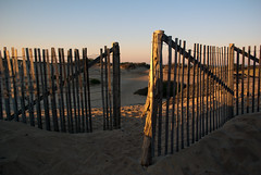 Cape Cod National Seashore (mrcrontab) Tags: morning sun beach sunrise fence sand glow pentax provincetown capecod dunes limited goldenhour 21mm nationalseashore capecodnationalseashore pancakelens pentaxlimited da21mm da21 k10d pentaxk10d da21mmlimited smcpda21mmf32al da21limited smcpentaxda21mmf32allimited