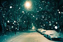 November Snow (bryanscott) Tags: winter snow night evening winnipeg manitoba bxk stuckfp