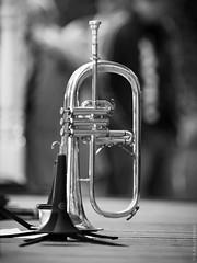 Michel Marre On The Break (thedot_ru) Tags: 2005 portrait blackandwhite bw musician festival garden french geotagged break canon20d trumpet jazz hermitage trumpetplayer michelmarre