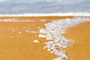 (danielle kiemel) Tags: ocean sea seascape macro beach nature landscape outdoors spring sand october photographer bokeh tide australia bubbles foam nsw newsouthwales centralcoast seafoam whitewash waterscape terrigal wamberal 2011 daniellekiemel wamberalbeach