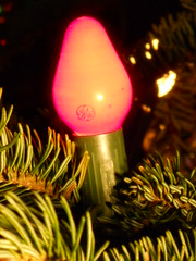 GE C7/CC (JeffCarter629) Tags: c7 generalelectricchristmas gechristmas gechristmaslights generalelectricchristmaslights gec7