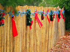 Twas the Fence Before Christmas (Jemsabell) Tags: christmas wreaths bows hff