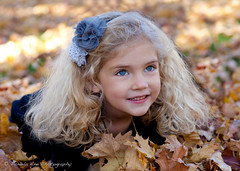 Having fun in the leaves (Pamela Bevelhymer) Tags: cute fall beautiful leaves closeup hair fun long michigan blueeyes blonde traversecity 4yearold youngchild hairthing onground pamelabevelhymer