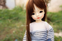 Final look? (Arisuyuki) Tags: doll bjd dollmore yosd babylambmiadoll miasbabydollaga daitsumi