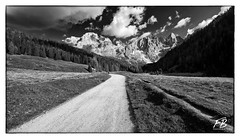Val Venegia in Black&White (Boscardin Francesco) Tags: parco del blackwhite val trentino francesco valles passo nazionale moena malga boscardin paneveggio venegia venegiotta wwwfrancescoboscardinit
