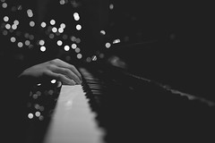 ORDINARY FINGERS (The Ordinary Life) Tags: christmas bw white black rabbit natal lights bn luci pianist natale bianco nero coniglio floriano pianista macchione