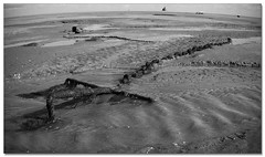 The Beach (roddersdad) Tags: beach chains anchors 2011 humberston canon1dsmkll wwwimagesbyclivecouk canonef1740mmf4lusmlenscopyrightclivejmaclennan