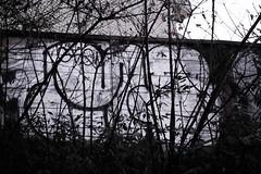 (J.F.C.) Tags: japan graffiti tokyo mq bbb dms 246 mkue gkq