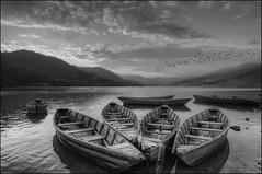 Fewa Lake Sunset (B&W), Pokhara, Nepal (Souvik_Prometure) Tags: nepal sunset blackandwhite monochrome sunrise boats boat blackwhite kathmandu pokhara annapurna hdr sarangkot nagarkot phewalake photomatix fewalake phewatal photomatixpro tonemapping sarankot tonemap machapuchare bwhdr blackandwhitehdr tokina1116mmf28 tokina1116mm topazadjust nikond7000 souvikbhattacharya mountannapurna mountmachapuchare balckwhitehdr