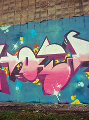 Last touch of spray in 2011 (Hoerone) Tags: brussels cats meta bad bruxelles haters nesk ruisbroek onehoer hoerone