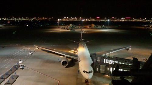 羽田空港。きれい、さぶい。