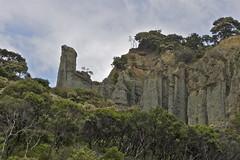 Putangirua Pinnacles loop track (Steve Attwood) Tags: newzealand canon landscape wellington lordoftherings badlands geology returnoftheking hoodoos wairarapa rockformation capepalliser putangiruapinnacles dimholtroad