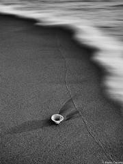 Relitti #9 (Corsaro078) Tags: sea abstract mare minimal seashell wreck astratto conchiglia relitti