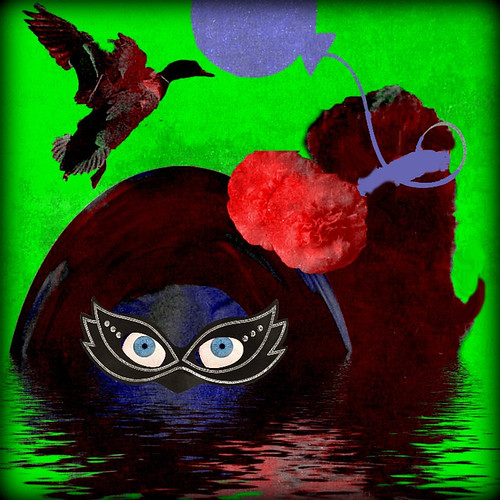 Subjective Reactions Presented Unsystematically, or, The Dark Lady, the Scottie, and the Duck