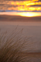 """Solitary Sunset • <a style=""""font-size:0.8em;"""" href=""""http://www.flickr.com/photos/55747300@N00/6649062149/"""" target=""""_blank"""">View on Flickr</a>"""